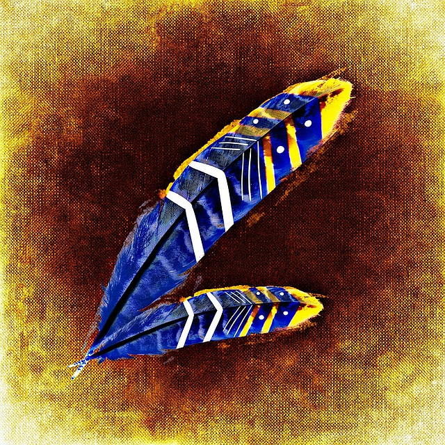 feather-1427829_640